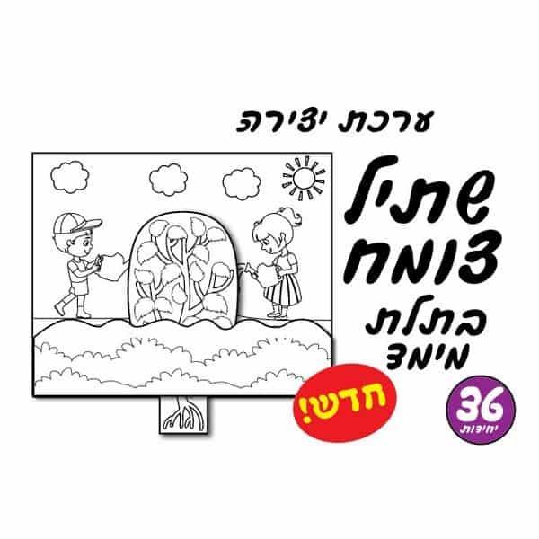 יצירה שתיל צומח בתלת מימד 36 יח'